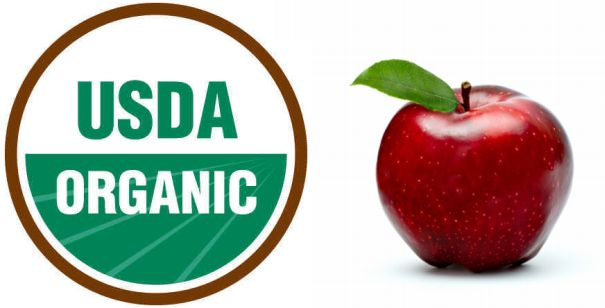 Organic Food vs Non Organic Food Organic vs Non Organic Food